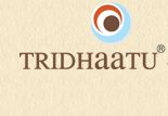 Tridhaatu Realty and Infra Pvt Ltd