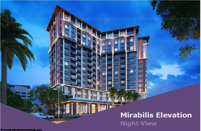 Mirabilis Mirabilis Elevation Image-3