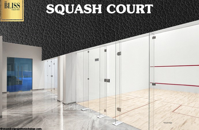 The Bliss Collection Omkar Bliss Squash Court