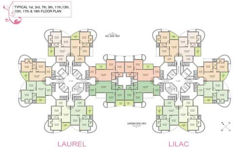Laurel and Lilac Floor Plan Odd