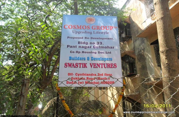 Gulmohar 17th May 2011