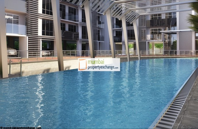 Proxima Swimming Pool