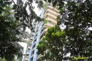 2886 Main - Green Ocean , Malad West