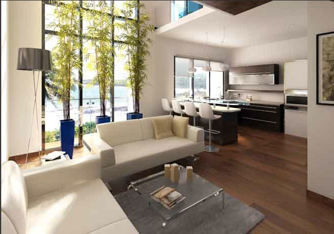 1 BHK Living room Duplex