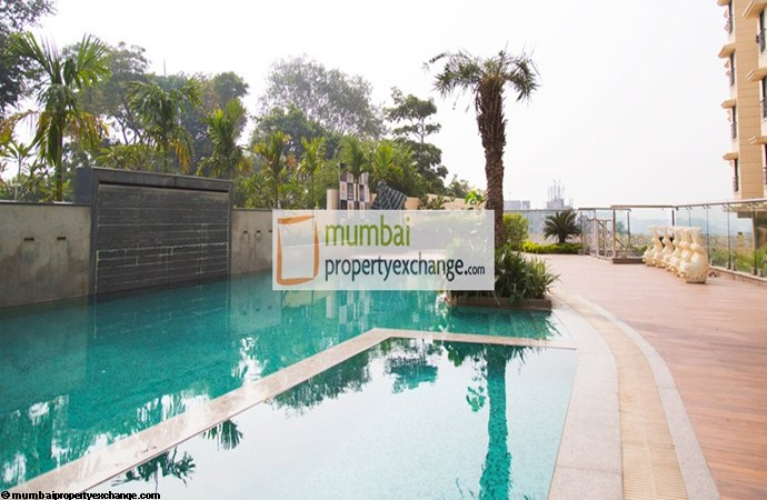 Mayfair Hillcrest 23rd Jan 2016 Swimming Pool